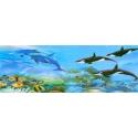 Badmat XXL 120x40 cm. - Dolfijn & Orka